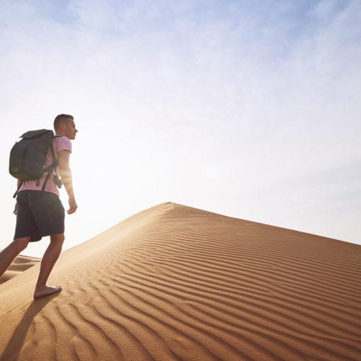 La victoire dans le desert